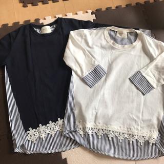 Chesty - 木本泉fleur トップス