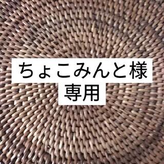 多肉植物 【パープルヘイズ&ティッピー】抜き苗(その他)