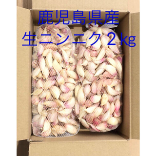 鹿児島県産 生ニンニク2㎏(野菜)