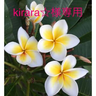 kirara☆様専用 (美容液)