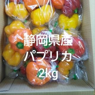 静岡県産パプリカ(2kg、型崩れ)(野菜)
