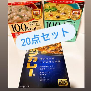 レトルトカレー 詰め合わせ 20点(レトルト食品)