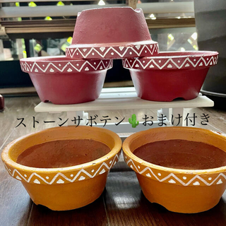 中古の素焼き平鉢リメイク品5個セット(ストーンサボテン🌵のおまけ付き)(プランター)