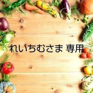 れいちむさま 専用 乾燥野菜 おまとめ(野菜)