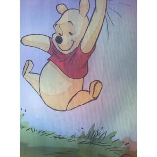 ディズニー(Disney)のプーさん♡レースカーテン(レースカーテン)