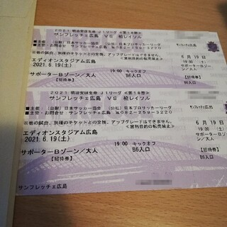 2021 明治安田生命 J1リーグ 第18節 サンフレッチェ広島vs柏レイソル(サッカー)
