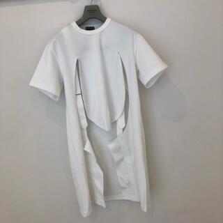 コムデギャルソンオムプリュス(COMME des GARCONS HOMME PLUS)のコムデギャルソンオムプリュスロングTシャツ(Tシャツ/カットソー(半袖/袖なし))