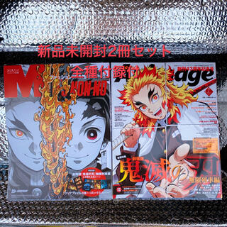 新品 鬼滅の刃 メンズノンノ&アニメージュ 煉獄セット 7月号付録 ブックカバー(少年漫画)