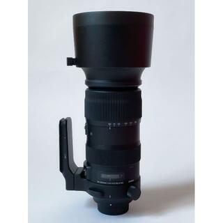SIGMA - SIGMA 60-600mm F4.5-6.3 DG OS HSM ニコン用