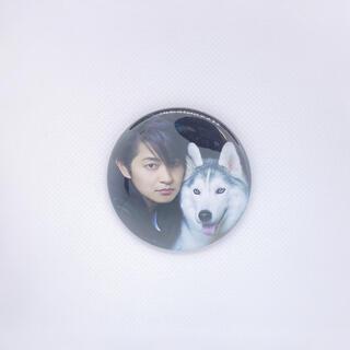 下野紘スペシャルステージ 「ONE CHANCE」 缶バッジ 犬