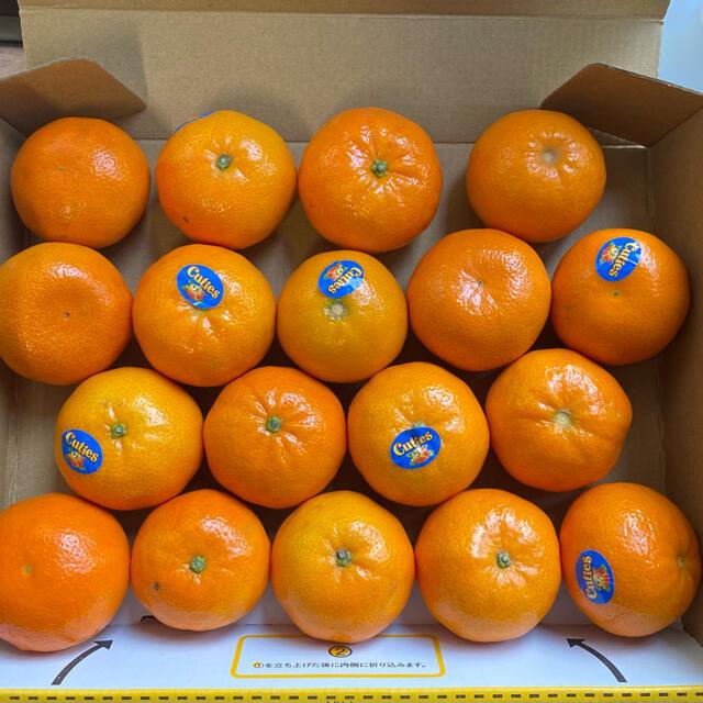 みかん キューティズ 手剥きオレンジ 1kg  17〜18個 食品/飲料/酒の食品(フルーツ)の商品写真