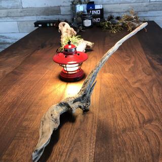 刀のような流木…天然物、オブジェ、インテリア⑦(彫刻/オブジェ)