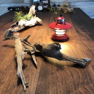 イビツな流木…天然物、オブジェ、インテリア⑩(彫刻/オブジェ)