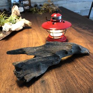 味のある流木…天然物、オブジェ、水槽、インテリア11(彫刻/オブジェ)
