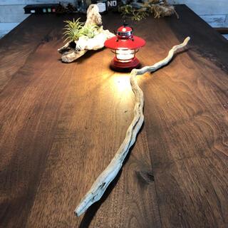 長〜いひねりある流木、インテリア、天然物、置き物12(彫刻/オブジェ)