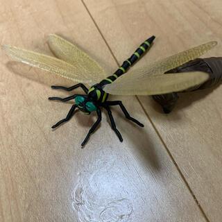 タカラトミーアーツ(T-ARTS)のオニヤンマ タカラトミーアーツ ガチャガチャ 昆虫の森 3点セット(その他)
