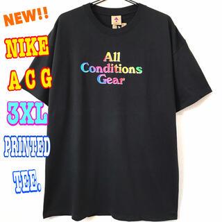 ナイキ(NIKE)の厚生地 USモデル☆ NIKE ACG グラデーション Tシャツ ヘビーウェイト(Tシャツ/カットソー(半袖/袖なし))