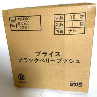 Takara Tomy - 未開封!ネオブライス ブラックベリーブッシュ