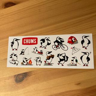 CHUMS - 大幅値下げ チャムス ステッカー