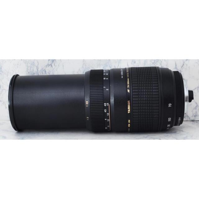 TAMRON(タムロン)の極上●超望遠●タムロン 70-300mm MACRO A17 ペンタックス用 スマホ/家電/カメラのカメラ(レンズ(ズーム))の商品写真