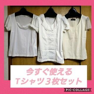エクリュフィル(ecruefil)のお得な3点セットまとめ売り レディース服 春夏 コーデ売 Tシャツ 綿100(Tシャツ(半袖/袖なし))