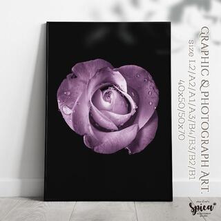 ☆インテリアフォトポスター/A3/rose violette【200】(アート/写真)
