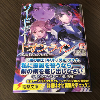 【黒騎士さん 専用】ソードアート・オンライン 25(文学/小説)