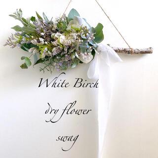 ドライフラワー 高原の風香る 白樺スワッグ 横長スワッグ WhiteBirch(ドライフラワー)