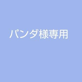 エーエヌエー(ゼンニッポンクウユ)(ANA(全日本空輸))のパンダ様専用(航空機)