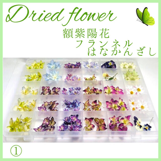 ドライフラワー 145輪 紫陽花 7種類 フランネル はなかんざし スミレ他(ドライフラワー)