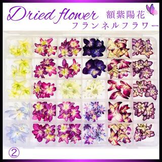 ドライフラワー 118輪 紫陽花 7種類 フランネルフラワーセット(ドライフラワー)