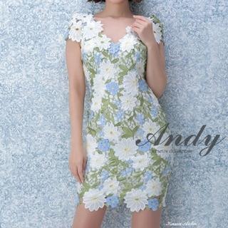 Andy - 【着用一回】Andy 総レース ミニドレス 完売品 花柄 刺繍