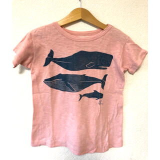 GO TO HOLLYWOOD - GotohollywoodシルククジラTシャツ120デニム&ダンガリー