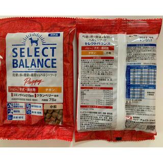 セレクト(SELECT)のセレクトバランス パピーチキン75g✖︎6袋(ペットフード)