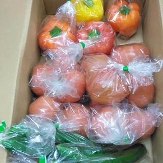 静岡県産野菜セット(トマト、胡瓜、パプリカ)(野菜)