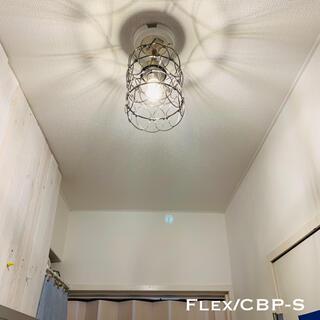 天井照明 Flex/CBP Variable フレックス シーリングライト(天井照明)
