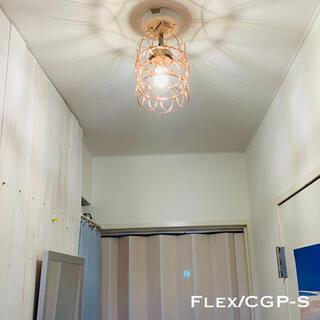 天井照明 Flex/CGP Variable フレックス シーリングライト(天井照明)