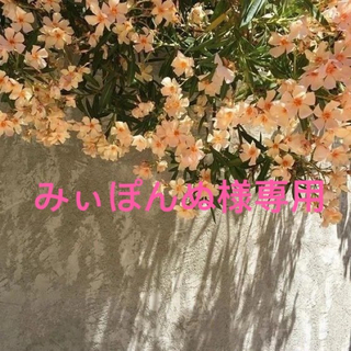 CHANEL - 新作!シャネルヴィンテージ風チョーカー