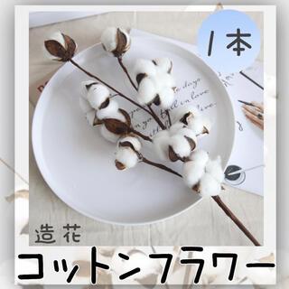 造花  白 コットン フラワー ドライフラワー 韓国 綿花 インテリア (ドライフラワー)
