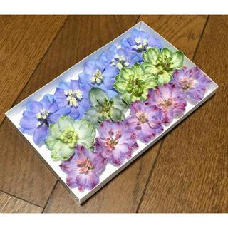 p⑥ 銀の紫陽花が作った彩りデルフィニウムのドライフラワー(ドライフラワー)