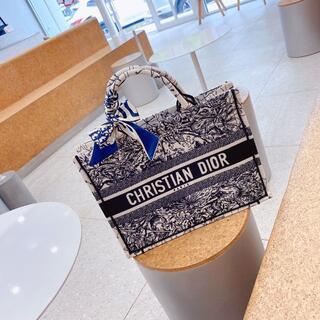 クリスチャンディオール(Christian Dior)のChristian Dior レディディオール カナージュ(その他)