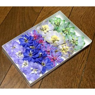 p⑦ 銀の紫陽花が作った彩りデルフィニウムのドライフラワー(ドライフラワー)