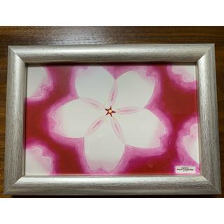 ☆ヒーリングアート☆   桜 クレパス画の写真 桜の絵 (フォトフレーム)