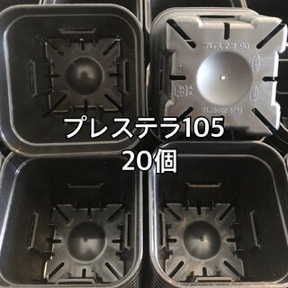 プレステラ105 黒 20個(プランター)