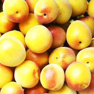 #黄梅 #オレンジ梅 2キロ 大玉 #大梅 ★ #梅干し #梅漬け 用 #完熟梅(フルーツ)