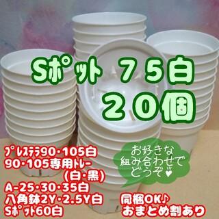 【スリット鉢】Sポット丸型75白20個 2.5号 プレステラ 多肉植物 プラ鉢(プランター)