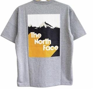 THE NORTH FACE - 【ゆりまむ7735様専用】ノースフェイス Tシャツ グレー Lサイズ ①