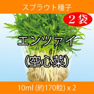 スプラウト種子 S-14 エンツァイ(空心菜) 10ml 約170粒 x 2袋(野菜)
