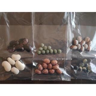 赤花豆、白花豆、みつむね、とら豆、青畑、鞍掛(野菜)