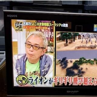 アクオス(AQUOS)のAQUOS LC-20EX3 液晶テレビ シャープ リモコン付き 美品(テレビ)